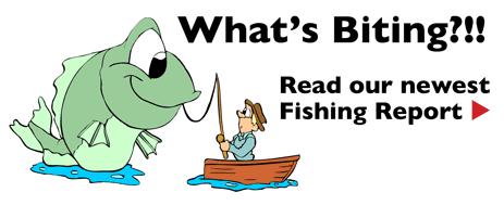 Ludington Fishing Reports