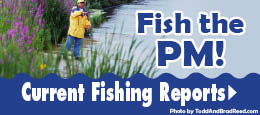 Fishing Reports for the Pere Marquette River